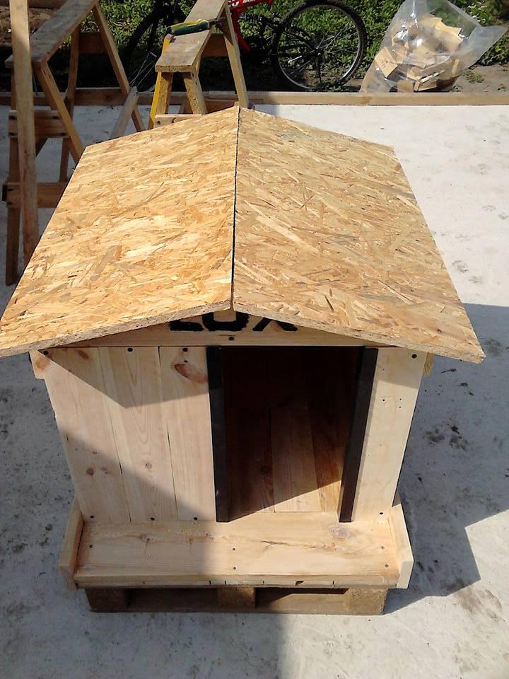 Egyszerű kutyaház készítése
