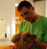 Állatorvosi Központ Kisállatrendelő