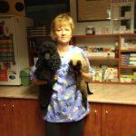 Állatorvosi Rendelő